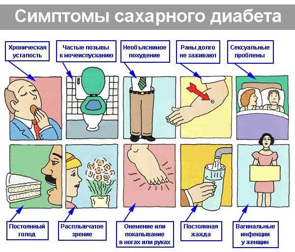 Какие симптомы сахарного диабета у взрослых