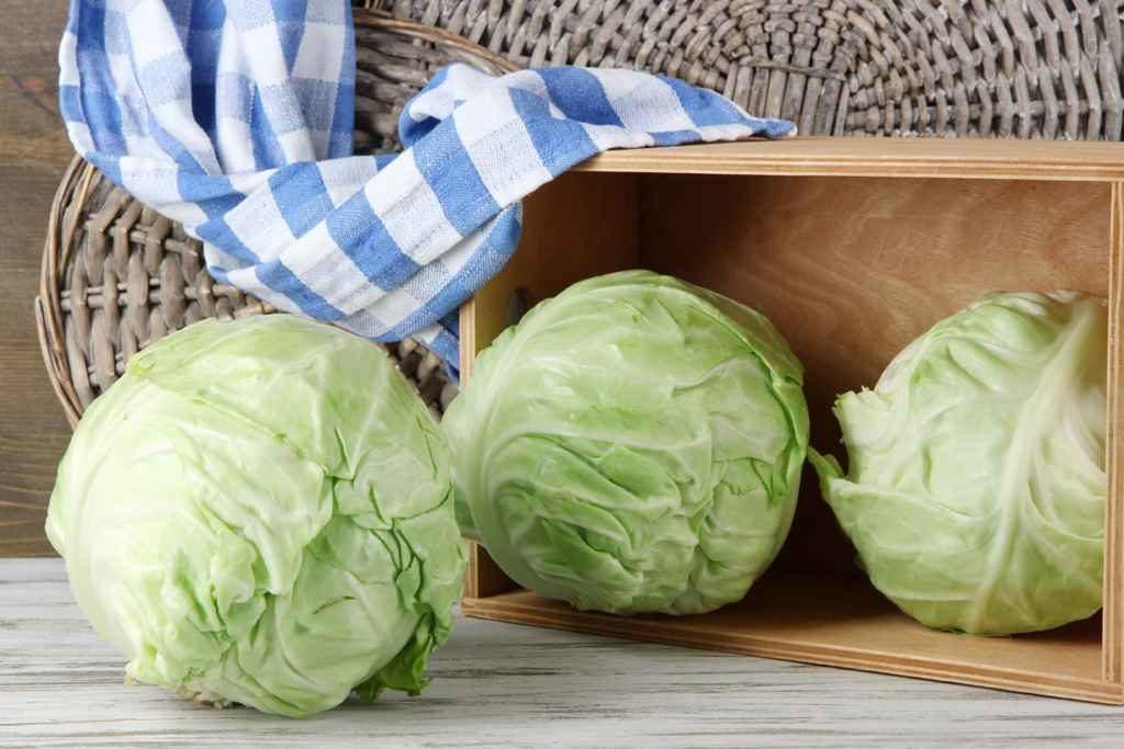 Необходимые продукты для лазаньи из капусты