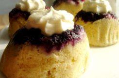 Ягодные бисквиты для больных сахарным диабетом