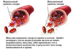 Нормы сахара в крови человека