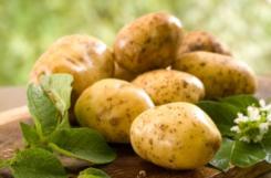 Картофель при сахарном диабете 2 типа