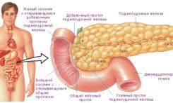 Как лечить поджелудочную железу при сахарном диабете