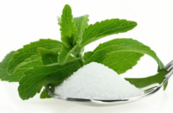 Трава стевия при сахарном диабете
