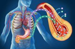 Гликозилированный гемоглобин: расшифровка анализа
