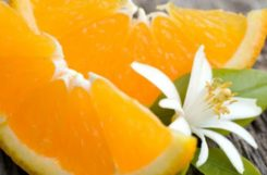 Апельсины при сахарном диабете: чем полезен, состав