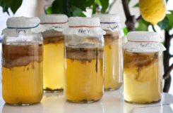 Можно ли пить чайный гриб при сахарном диабете 2 типа