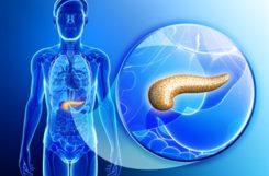 Пиявки при сахарном диабете 2 типа – куда ставить и можно ли проводить гирудотерапию