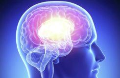 Атеросклероз сосудов головного мозга: симптомы и лечение бляшек, диагностика заболевания