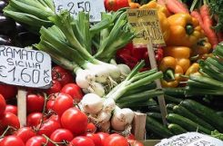 Овощи в диете диабетика. Какие овощи можно есть при сахарном диабете