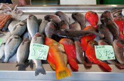 Можно ли есть рыбу при сахарном диабете? Польза морепродуктов