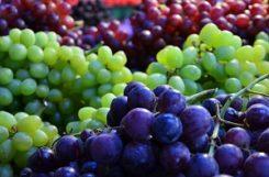 Польза винограда при сахарном диабете: сколько винограда можно есть диабетику