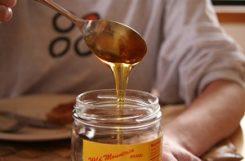 Можно ли есть мед при сахарном диабете? Польза и вред меда для диабетиков