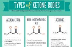 Кетоновые тела в моче (кетонурия): причины, лечение, чем грозит