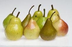 Польза и вред груши при сахарном диабете
