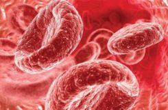 Гликозилированный гемоглобин повышен, понижен: расшифровка значений анализа, причины отклонения от нормы