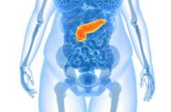 Стеатоз поджелудочной железы: что это такое, лечение и препараты